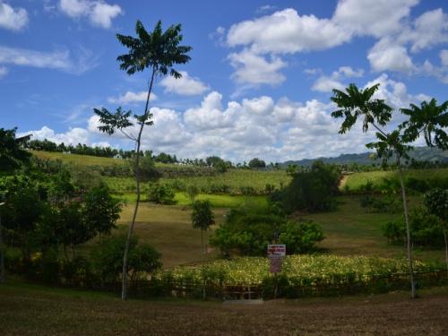Kawa-Kawa Hill