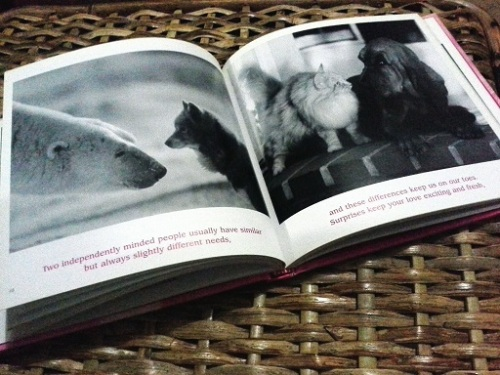 A spread from Bradley Trevor Greive's book, The Simple Truth About Love.