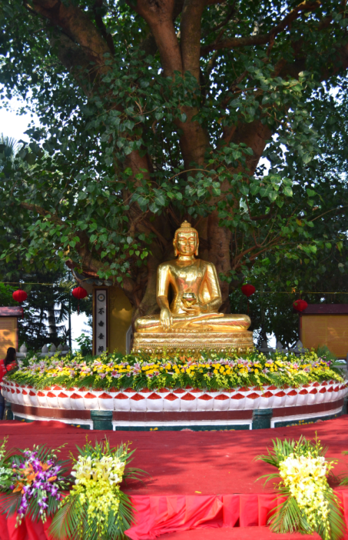 The bodhi tree giving shade to the meditating golden Buddha statue is said to be a gift from the Indian Prime Minister Razendia Prasat who visited the temple in 1959.